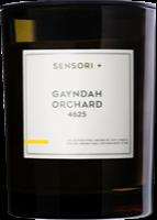 Sensori+ Gayndah Orchard 4625 candle, from $29