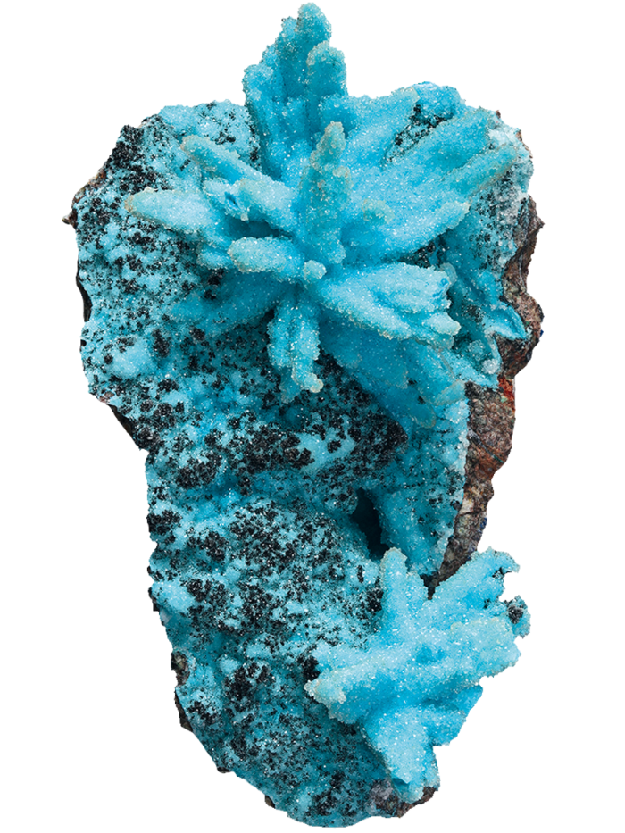 African druzy chrysocolla, $90,000, from Crystal Classics