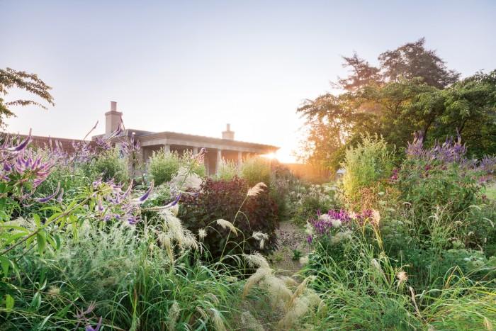 July in a walled garden in Wiltshire designed by Marcus BarnettStudio