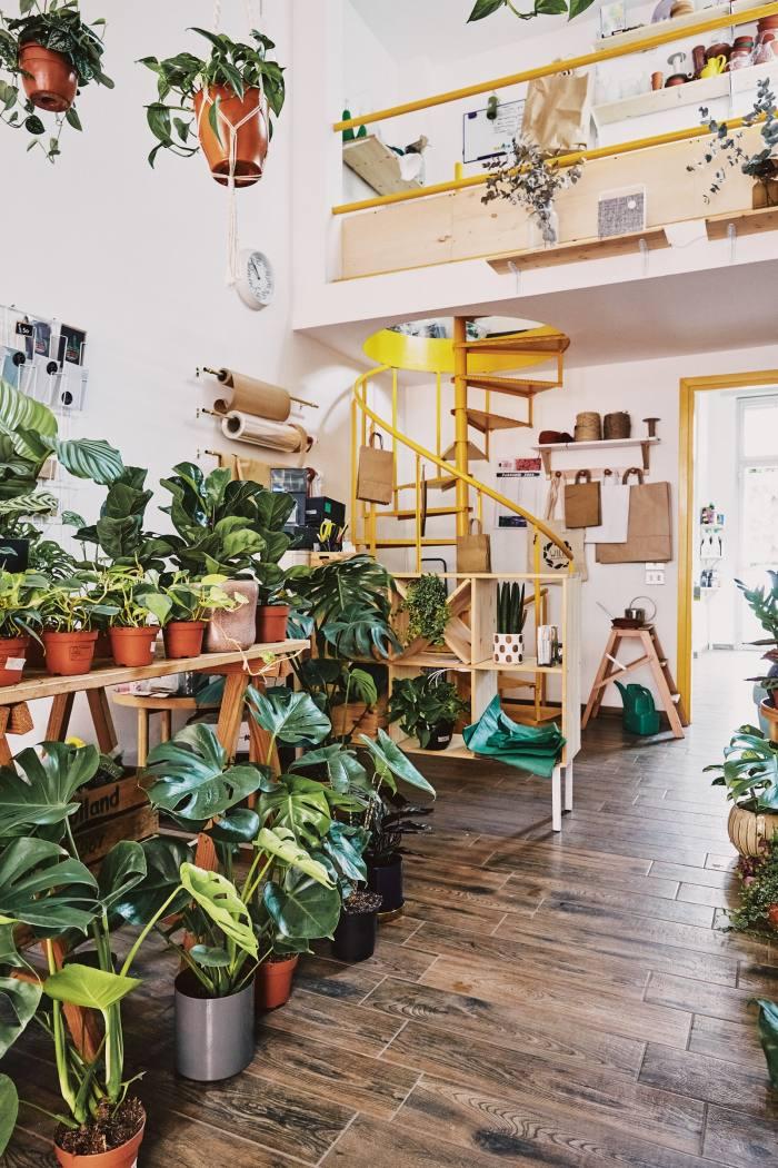"""Like an urban-Scandi remake of The Secret Garden""– the shop's interior"