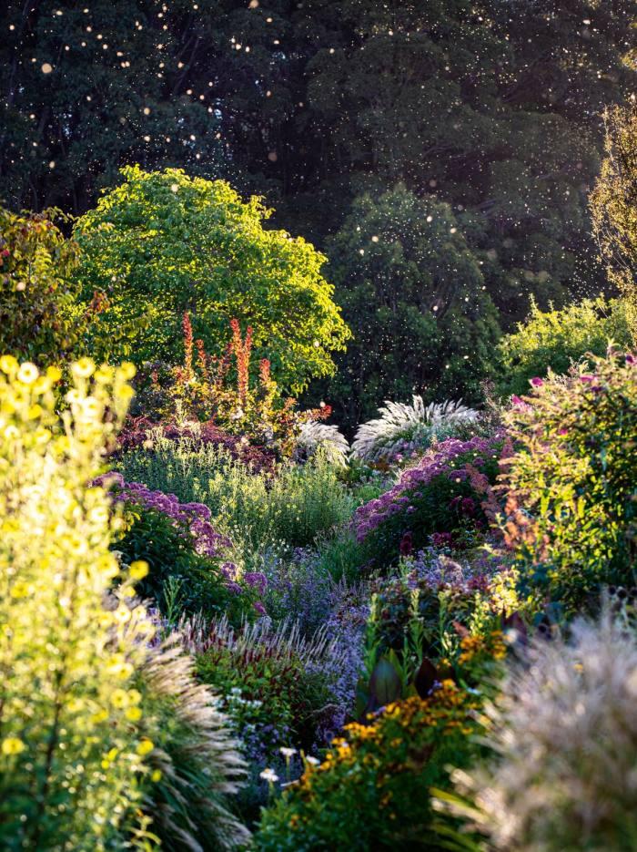 Sarah Ryan's Hillandale garden in Yetholme, New South Wales, Australia