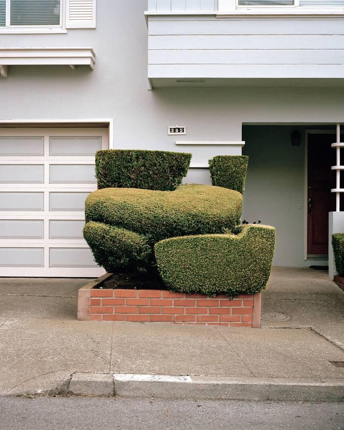 Irish Yew by Marc Alcock, from California Topiary
