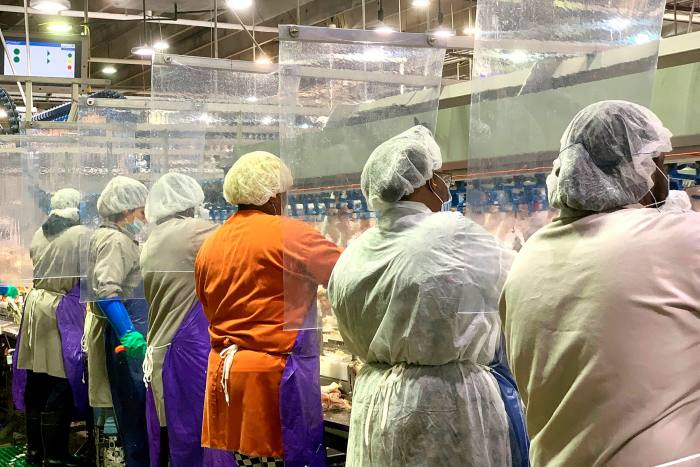 Workers wear protective masks and stand between plastic dividers at Tyson's poultry processing plant in Camilla, Georgia