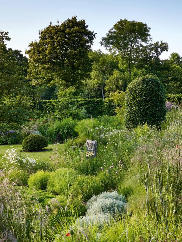 A garden in Devon by Alasdair Cameron