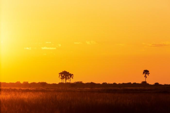 The sun sets over the Makgadikgadi
