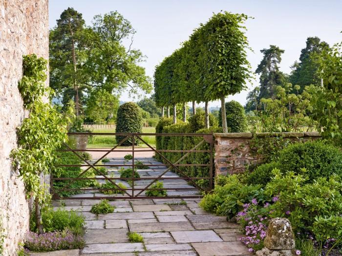 A row of topiary trees in the Alasdair Cameron-designed garden in Devon