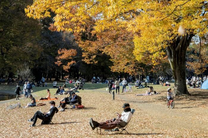 Yoyogi Park: 'A pastoral playground right amid the world's biggest city'
