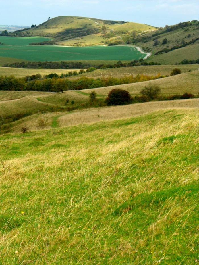 The Ridgeway National Trail crosses the Chilterns