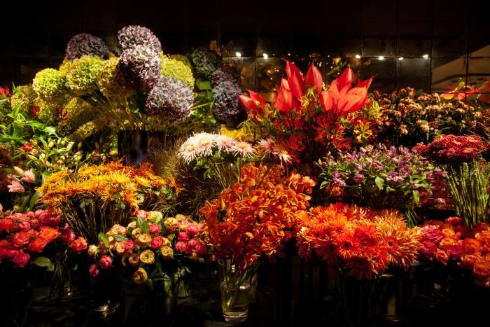 Menno Kroon flower shop in Cornelis Schuytstraat, Amsterdam