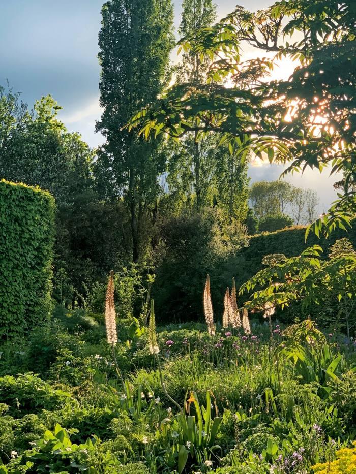 Landscape architect Tom Stuart-Smith's The Barn Garden at Serge Hill, Hertfordshire