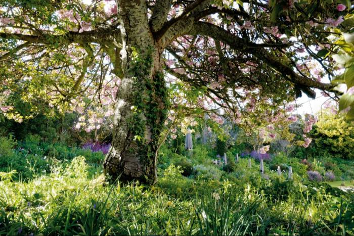 The garden designed by Isabel and Julian Bannerman at Trematon Castle, Cornwall