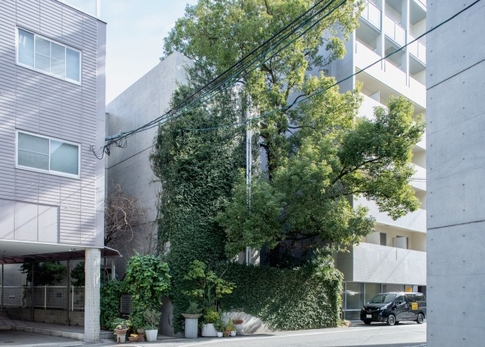Ando's Osaka studio