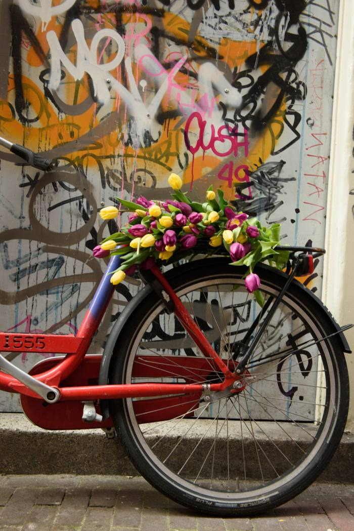 Tulips rest on the seat of a bicycle in an alley in Amsterdam