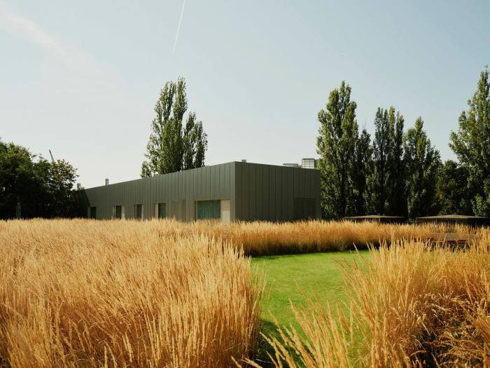 Yellow field of tall grasses and a green lawn in front of a low black building