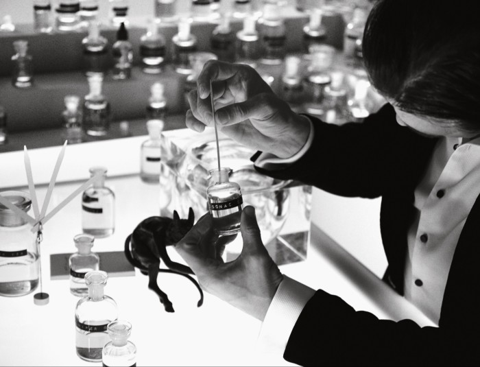 Selecting botanicals forSeventy One Gin