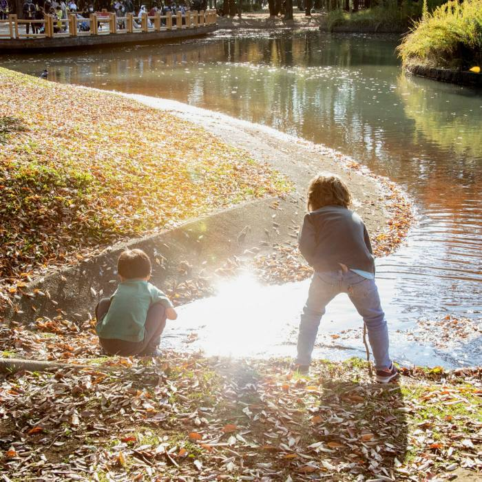 ... to children playing after school, Yoyogi's 'green bronchioles fill and empty with the rhythm of the day'
