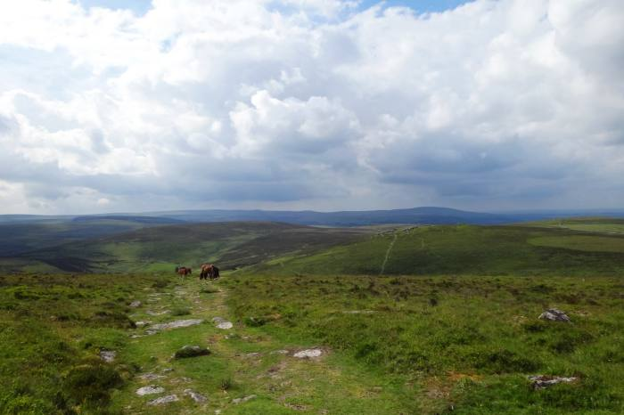 The south of the Two Moors Way traverses Dartmoor National Park