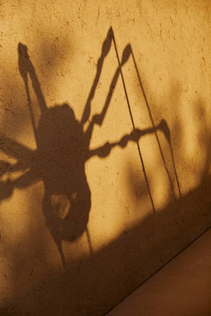 """The shadow of """"Spider"""", 1994, by Louise Bourgeois"""
